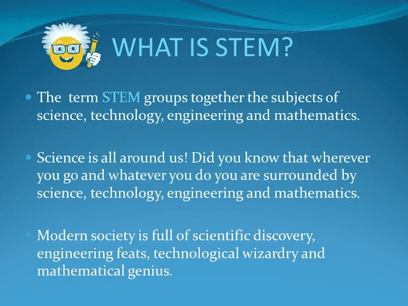 Stem Meaning Definition
